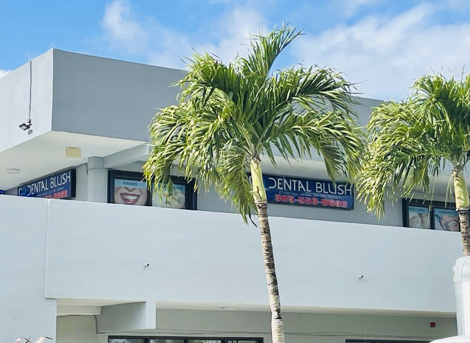 Why Go To a Dental Clinic in Miami Florida